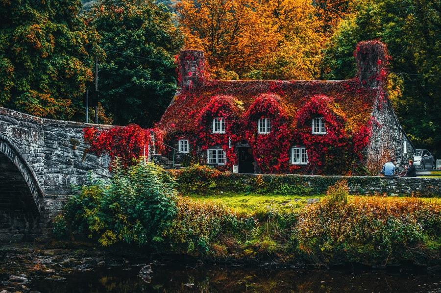 maison-avec-jardin
